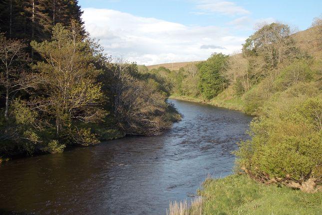 Ettrick Water of Ettrick Valley, Selkirk TD7