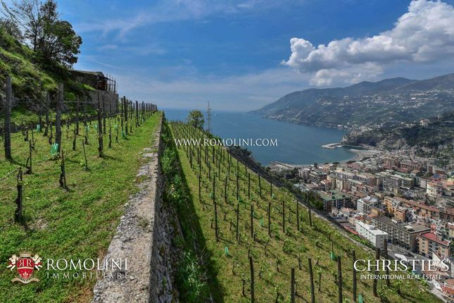 Thumbnail Farm for sale in Maiori, Campania, Italy