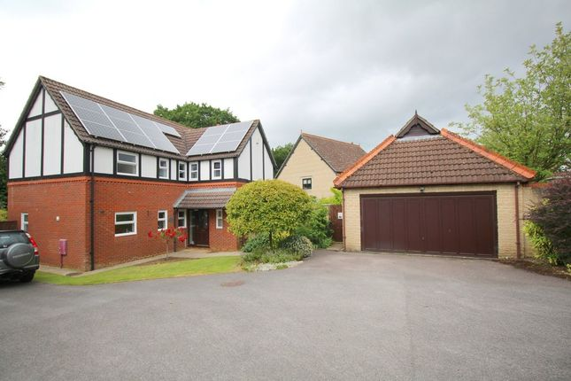 Thumbnail Detached house for sale in Barry Place, Derry Hill, Calne
