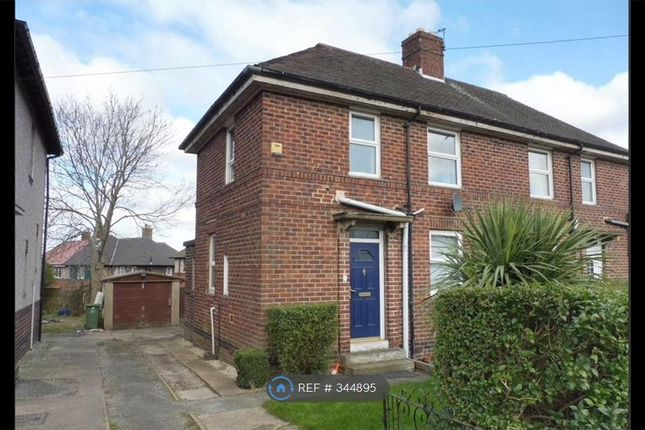 Thumbnail Semi-detached house to rent in Algar Road, Sheffield