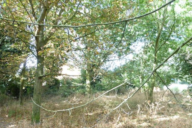 Thumbnail Land for sale in Wootton Drift, Edward Benefer Way, King's Lynn, Norfolk