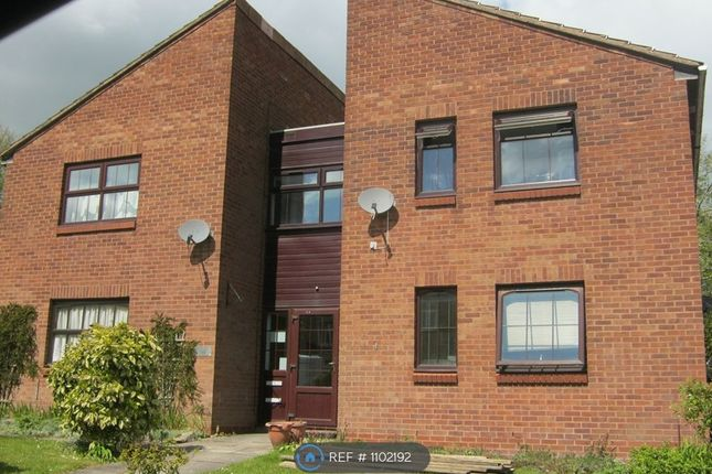 Studio to rent in Chaffinch Close, Cannock WS12
