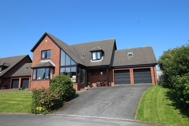 Thumbnail Detached house for sale in Curlew Crescent, Newtownards