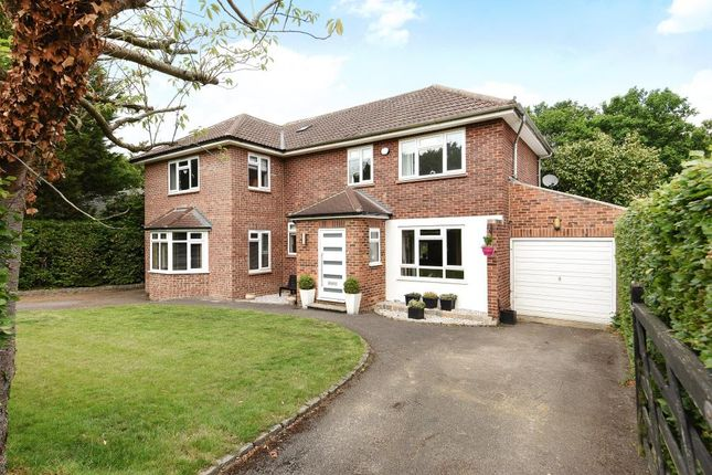 Thumbnail Detached house for sale in Harpesford Avenue, Virginia Water