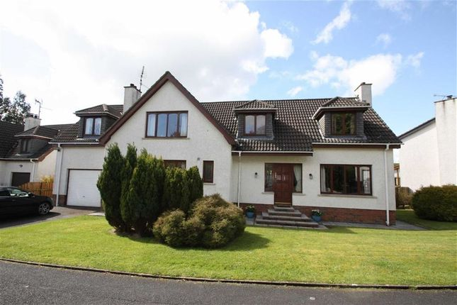 Thumbnail Detached house for sale in Carnglave Manor, Ballynahinch, Down