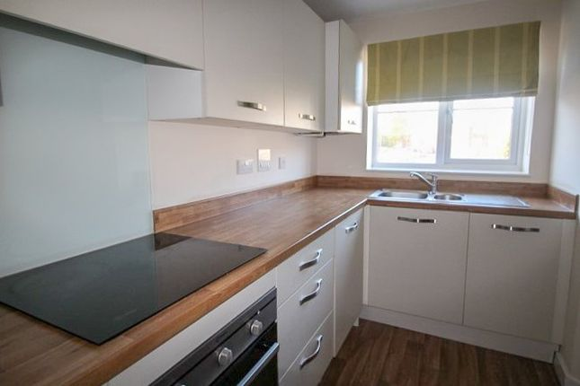 Thumbnail Terraced house to rent in Norton Road, Norton, Stockton-On-Tees