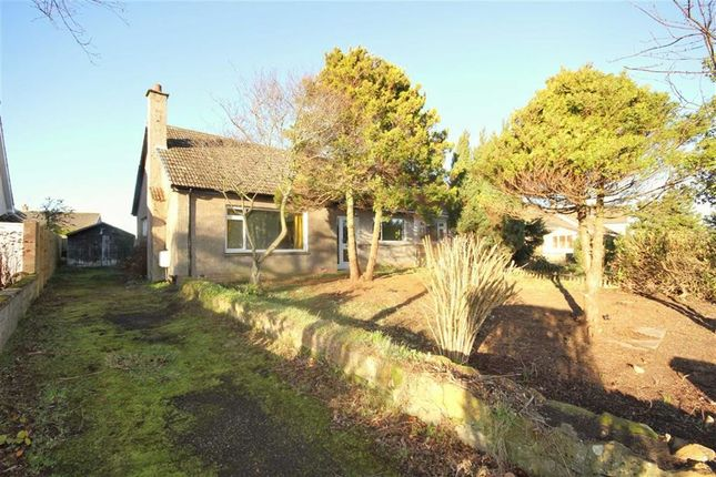 Thumbnail Semi-detached bungalow for sale in 20, Drumcarrow Road, St Andrews, Fife