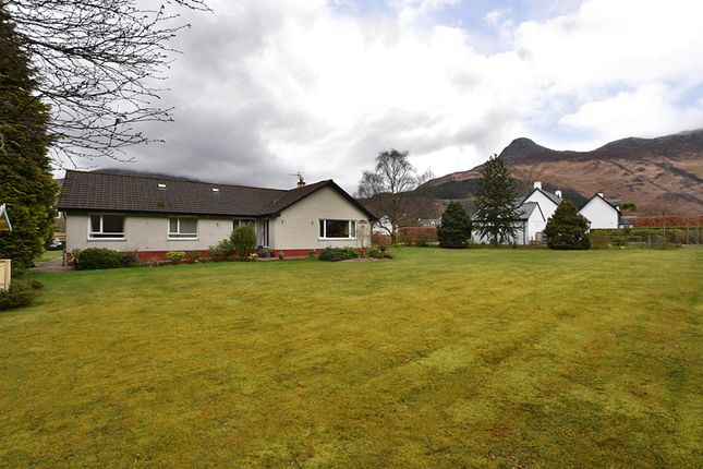 Thumbnail Detached bungalow for sale in Glencoe, Ballachulish
