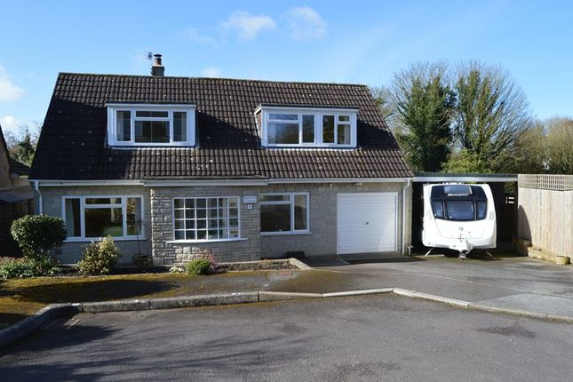 Thumbnail Detached house for sale in Paddock Close, Shaftesbury