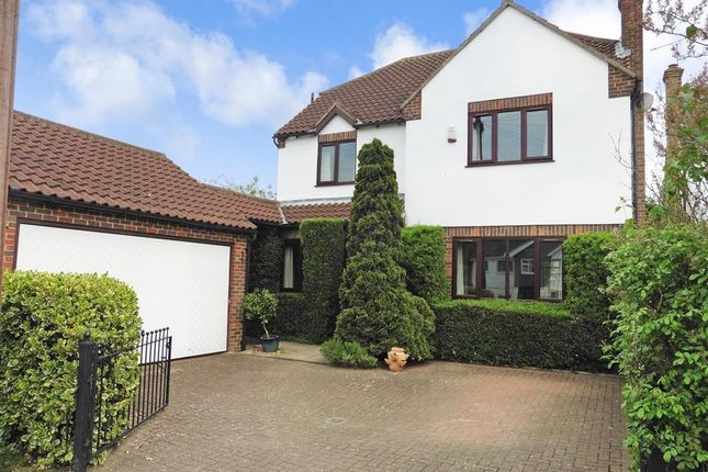 Thumbnail Detached house for sale in Coopersale Common, Coopersale, Essex