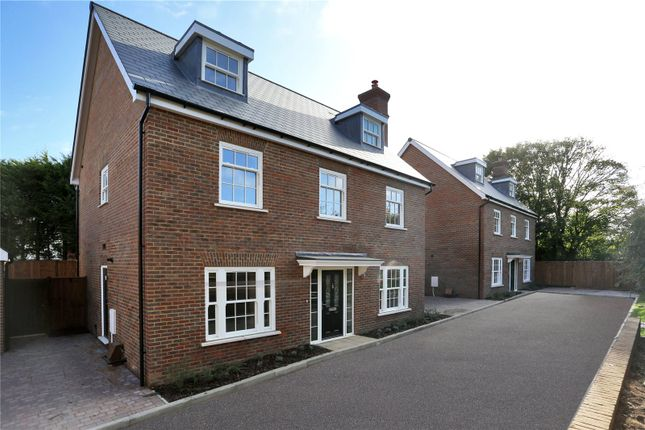 Thumbnail Detached house for sale in Rocks Hollow, Southborough, Tunbridge Wells, Kent