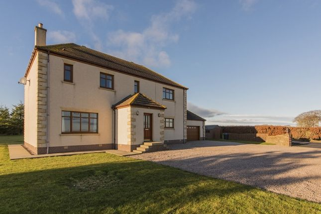 Thumbnail Detached house for sale in West Watten, Wick, Caithness, Highland