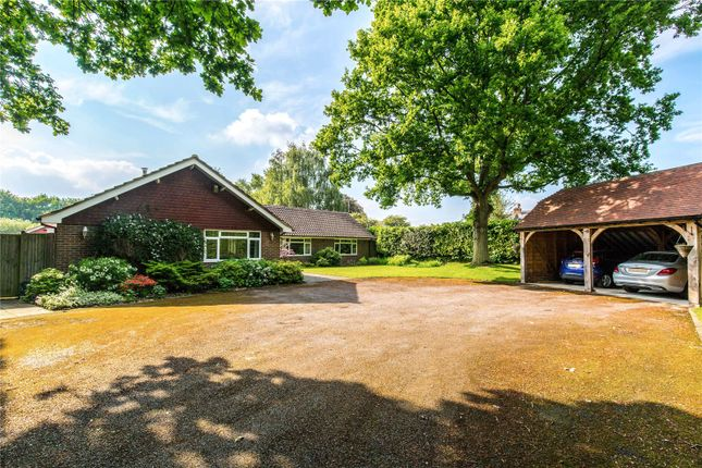 Thumbnail Detached bungalow for sale in Lower Station Road, Newick, Lewes, East Sussex