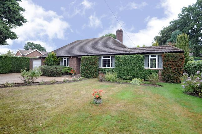 Thumbnail Detached bungalow to rent in Chavey Down Road, Winkfield Row