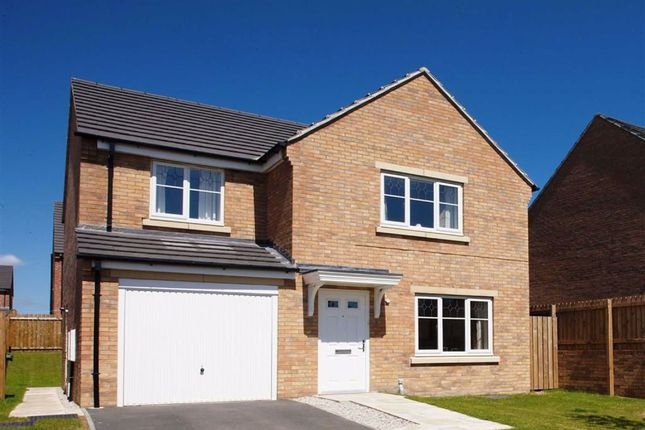 Thumbnail Detached house for sale in Northfield Way, Kingsthorpe, Northampton