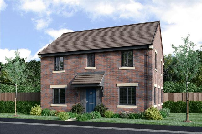 "Thumbnail Detached house for sale in ""The Buchan Da Alternative"" at Priory Gardens, Corbridge"