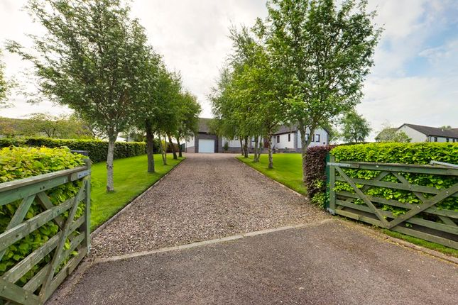 Thumbnail Detached bungalow for sale in New - Parklands, Meadowflatts Road, Thankerton
