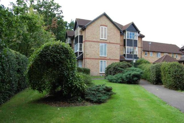 Studio to rent in Williams Close, Addlestone
