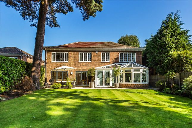 New Properties For Sale In Woking
