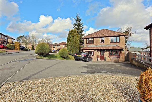 Thumbnail Detached house for sale in Beechwood Drive, Llantwit Fardre, Pontypridd