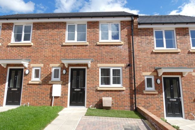 Thumbnail Terraced house to rent in Kingfisher Avenue, Stockton On Tees