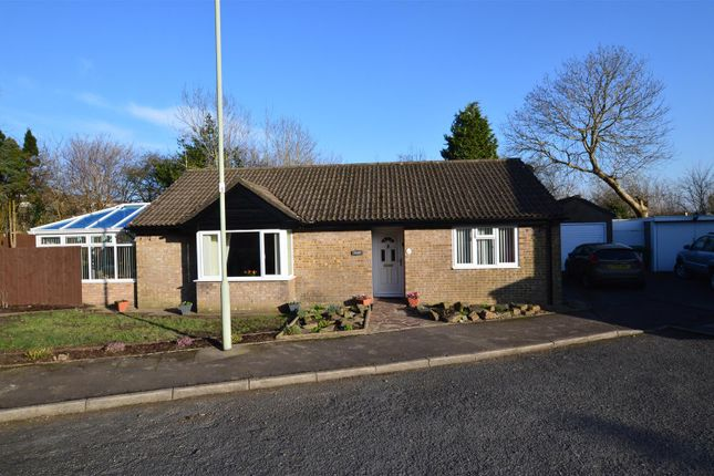 3 bed detached bungalow for sale in Ash Walk, Talbot Green, Pontyclun