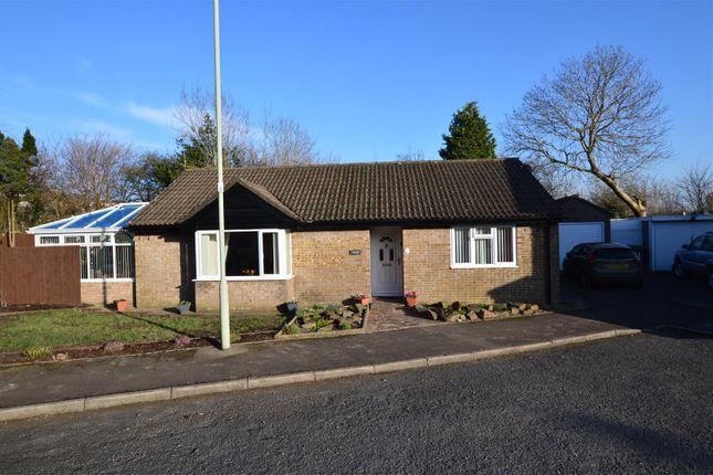 Thumbnail Detached bungalow for sale in Ash Walk, Talbot Green, Pontyclun