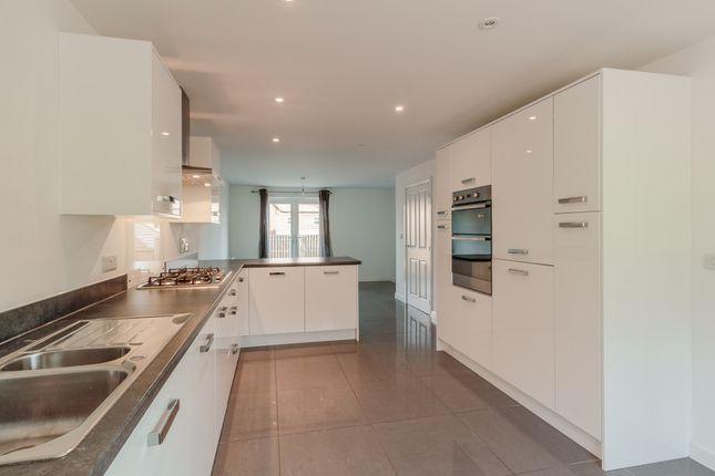 Thumbnail Detached house to rent in Avocet Road, Apsley, Hemel Hempstead