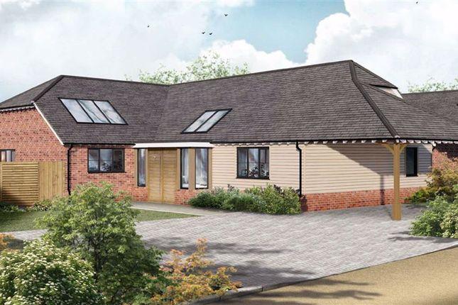 Thumbnail Detached bungalow for sale in Lees Road, Ashford, Kent