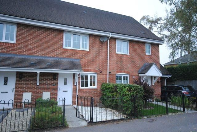 2 bed terraced house to rent in College Road, College Town