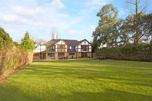 Thumbnail Detached house for sale in Ashley Road, Walton-On-Thames, Surrey