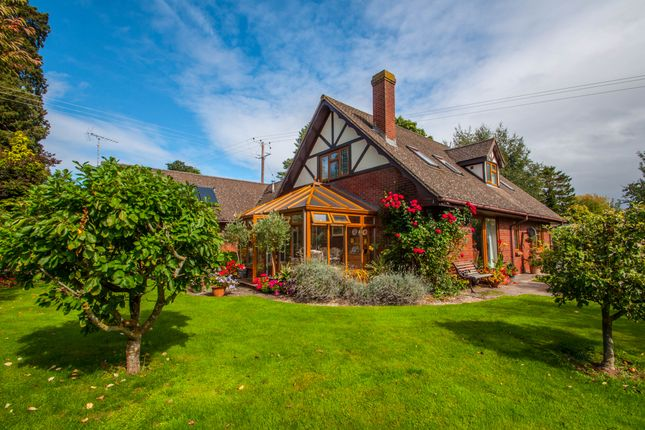 Thumbnail Detached bungalow for sale in The Park, Wormelow, Hereford