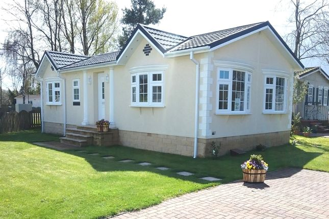 Thumbnail Bungalow for sale in Beechtree Park, Denny, Stirlingshire