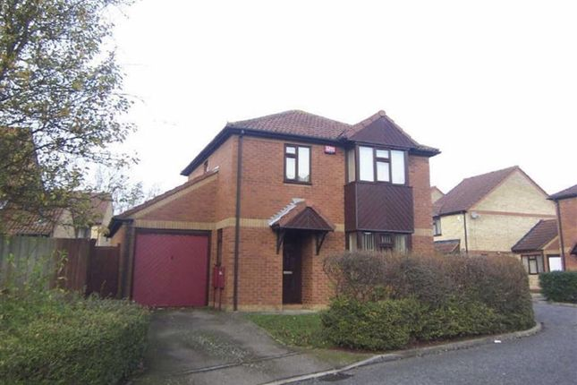 Thumbnail Detached house to rent in Lavender Grove, Walnut Tree, Milton Keynes
