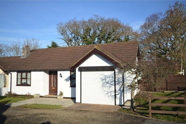 Thumbnail Detached bungalow to rent in Summerlands Copse, Exeter Cross, Liverton, Newton Abbot