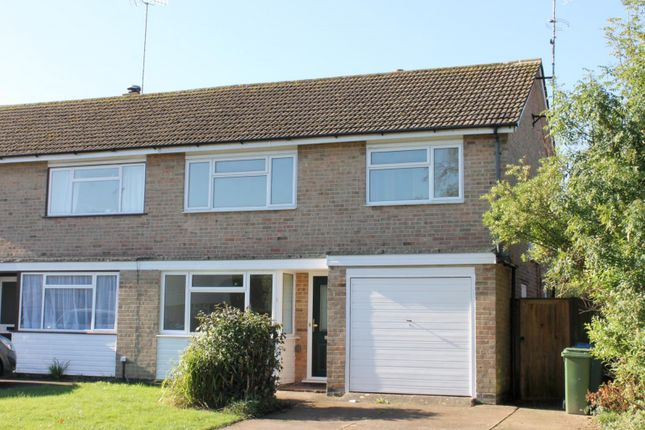 Thumbnail Semi-detached house to rent in Millfield, Southwater, Horsham