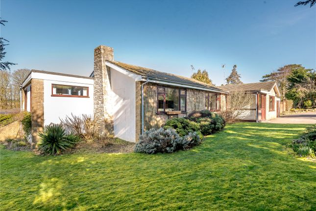 Thumbnail Bungalow for sale in River View Close, Chilbolton, Stockbridge, Hampshire