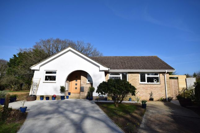 Thumbnail Detached bungalow for sale in Oaklands Close, Ryde