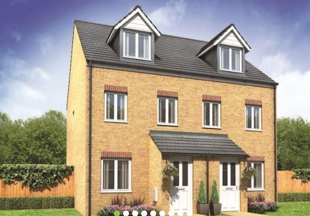 Thumbnail Semi-detached house for sale in Plot 143 Souter, Hampton Gardens, Hampton, Peterborough