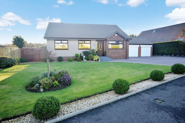 Thumbnail Detached bungalow for sale in Auchavan Gardens, Finglassie, Glenrothes