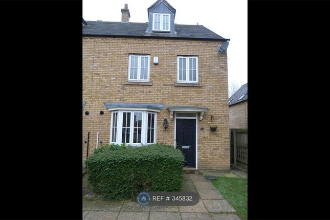 Thumbnail Semi-detached house to rent in Avocet Close, Rugby