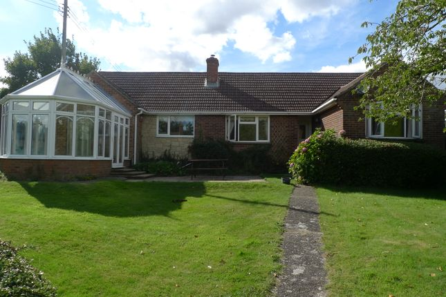 Thumbnail Detached bungalow to rent in Worlds End, Beedon, Newbury
