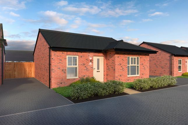 Thumbnail Bungalow for sale in New Lane, Dishforth