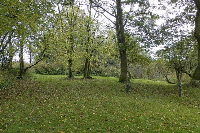 Gardens In October