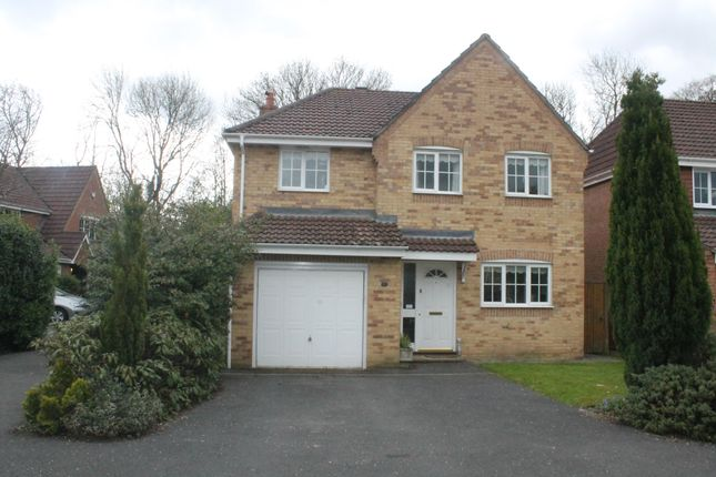 Thumbnail Property to rent in Wentworth Crescent, Beggarwood, Basingstoke