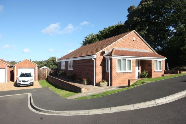 Thumbnail Bungalow for sale in Fircroft Court, Loftus, Saltburn-By-The-Sea