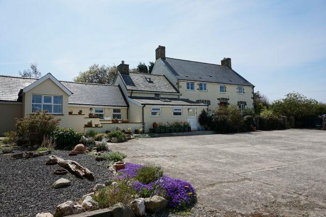 Thumbnail Farmhouse for sale in Felinwynt, Cardigan