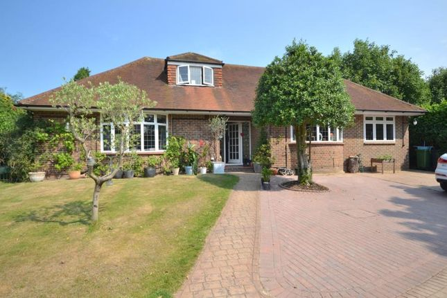 Thumbnail Bungalow to rent in Orchard Drive, Horsell, Woking