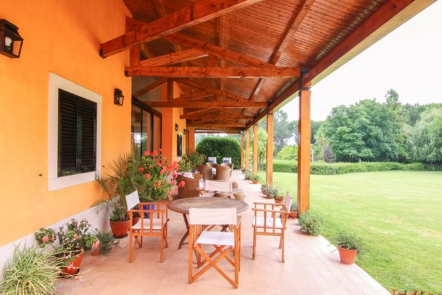 Thumbnail Detached house for sale in Vale De Santarém, Santarém, Santarém