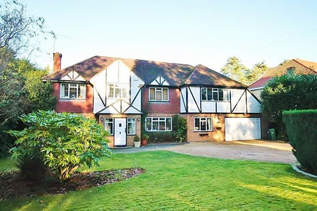 Thumbnail Detached house to rent in Springfield Road, Camberley
